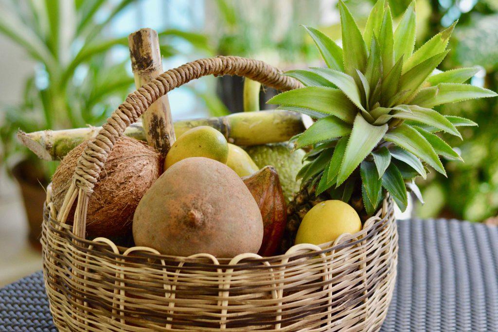 Zabricot Fruit Basket