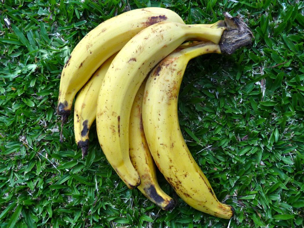 Plantain Fruit
