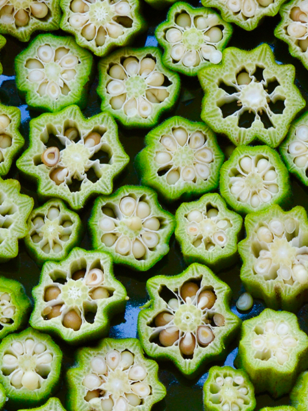 Okra Kaleidoscope